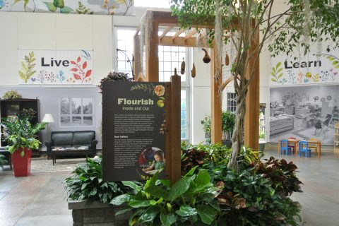 Flourish Inside and Out at the Untied States Botanic Garden